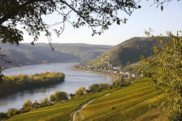 Blick auf Lorch am Rhein. Foto: Stadt Lorch