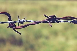 barbed-wire-887275__180