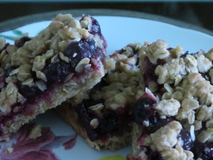 Berry Berry Streusel Bars