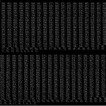 Java【練習問題】~テキストデータの数値を均等にグループ分けする~