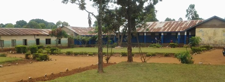 primary school from Kagera region.