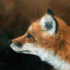 Английский художник David Stribbling Часть 5.