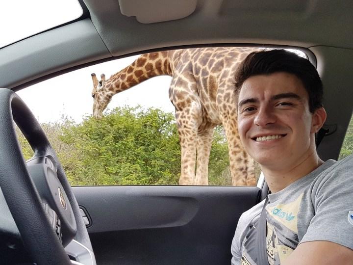 Safari pelo kruger park (4)