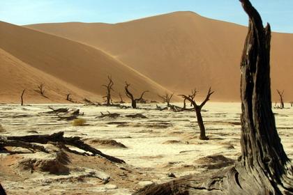 desertul namib