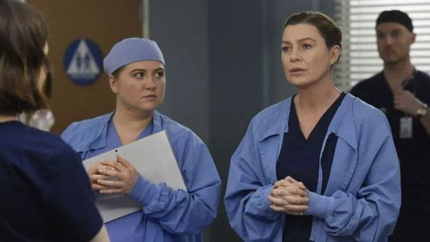 Grey's Anatomy 16x18 Crítica