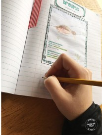 tips for interactive notebooks