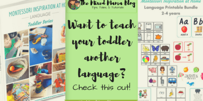 Want to teach your Toddler another language