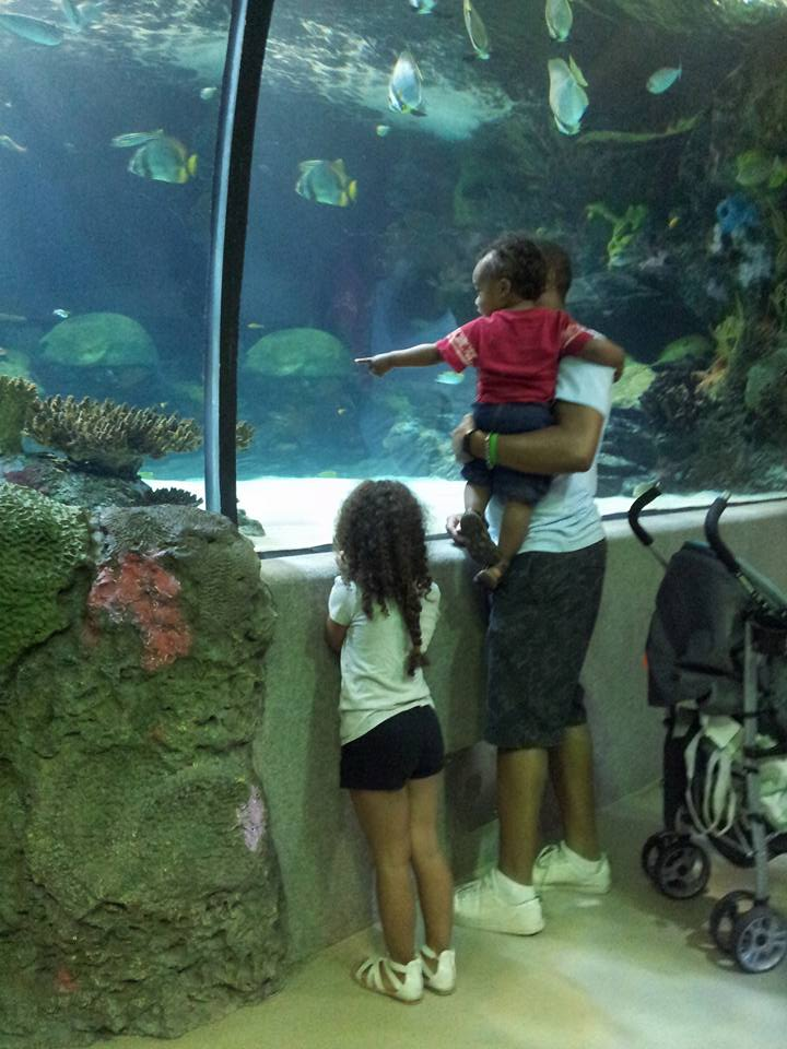 Visit Virginia Beach with Kids - 5 Things to See by Mixed Family Life for Kid World Citizen _ VA Aquarium
