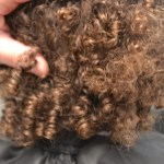Curly Hair London Review