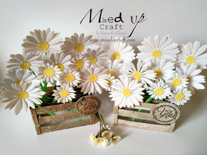 Daisy Pop Up Box Card