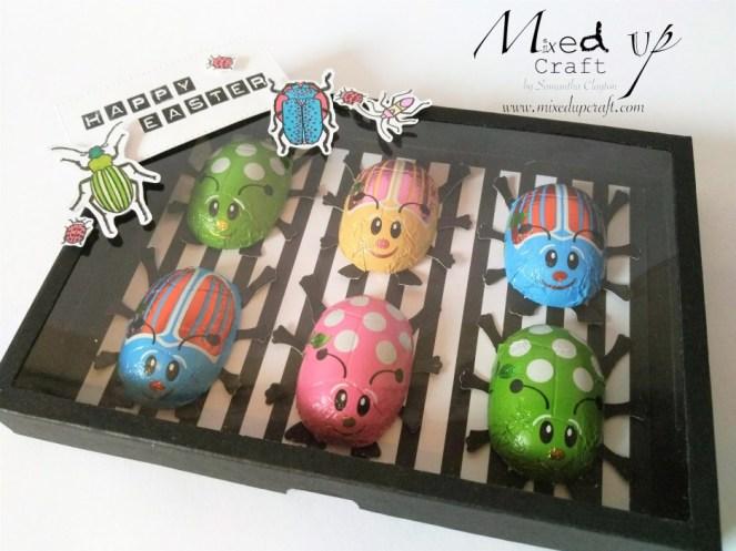 Specimen Gift Box