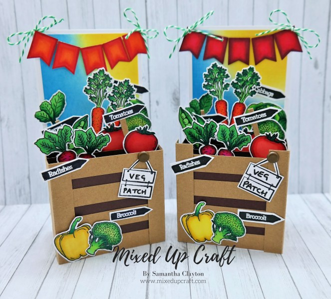 Pop-Up Veg Patch Box Card
