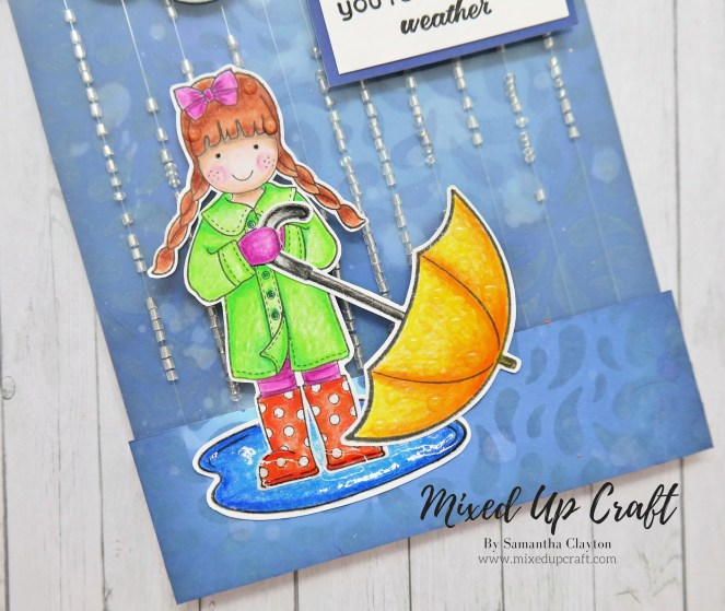 Rainfall Shaker Card