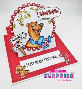 Made To Surprise Slider Card