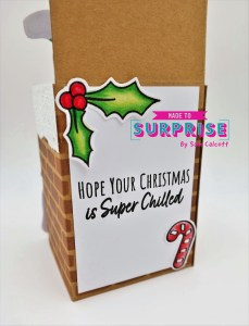 Fun & Festive Pop Up Box Card!
