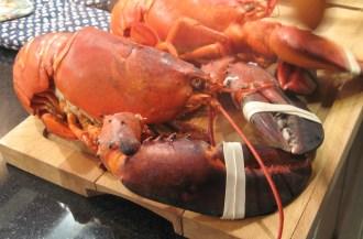 Lobstrt