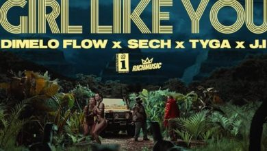 Photo of Dimelo Flow, Sech, Tyga, J.I – Girl Like You