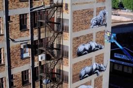 ROA african street murals took aver a month to complete!