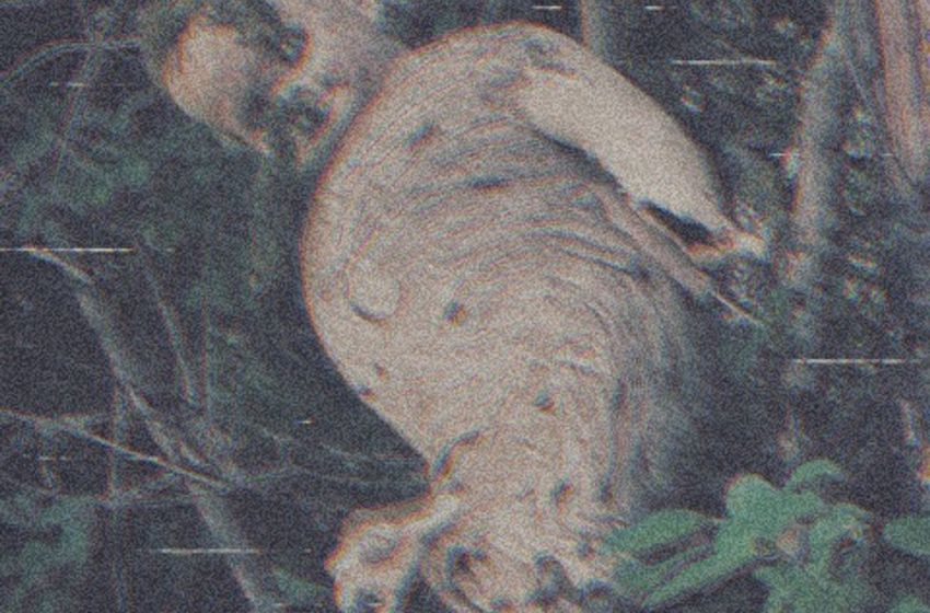 Tribe Vega$ – Colossal 3 (Instrumental Mixtape)
