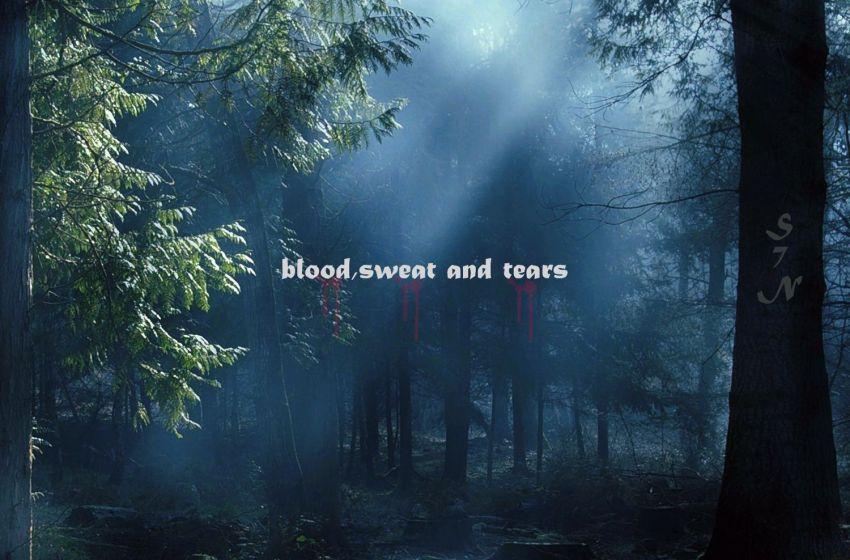 Sev'n – Blood, Sweat & Tears (Instrumental Mixtape)