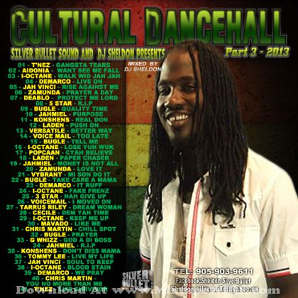 silver-bullet-sound-cultural-dancehall-3