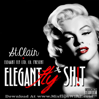 elegant-fly-shit