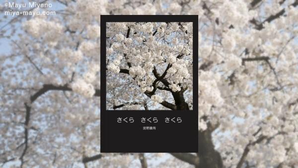 151209photobook