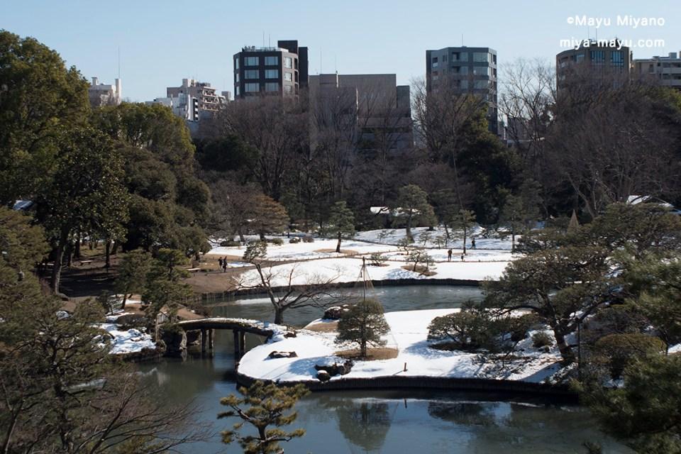 5日前に雪が降った六義園