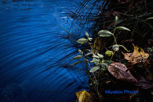 波紋,川,水