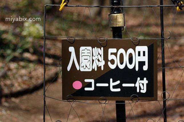 高崎クリスマスローズガーデン,アクセス,開花,コーヒー,カフェ