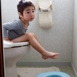 トイレ,おまる,カバー,子供,トレーニング