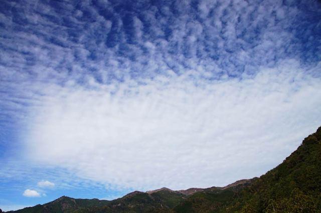 11月29日の空の様子