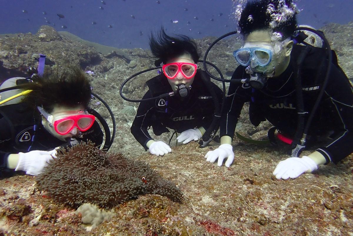 下地島の中の島チャネルへボート体験ダイビング