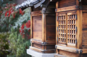 東福寺周辺