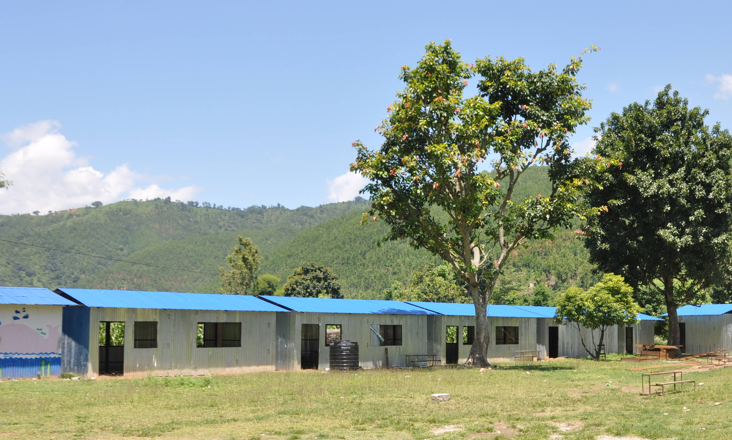 Image result for nepal school with tree