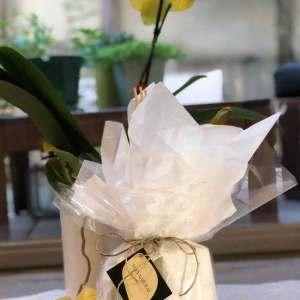 מארז מתנה לבישום הבית  Italian Flowers