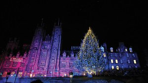 Edinburgh-Christmas-tree1