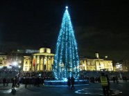 Trafalgar-Square-Christmas-tree