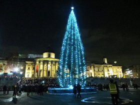 Trafalgar-Square-Christmas-tree