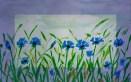 albastrele 011_rama_mrl