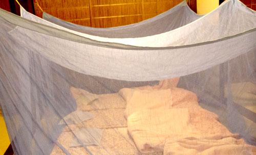 蚊帳の画像