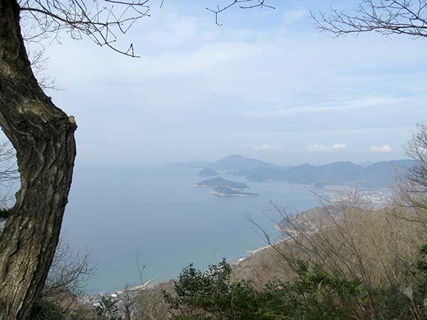 天空の鳥居「高屋神社」景色