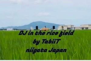 Tabiit タビート  田んぼフェス DJ