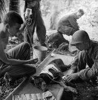 Estos combatientes cuidan a un perro herido durante la acción en la Península Orote en 1944