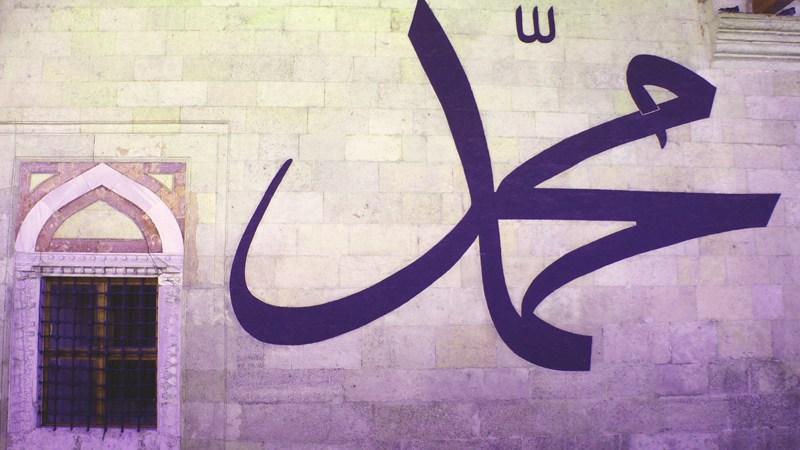 Muhammed, s.a.v.s., kao društvena ličnost