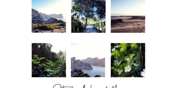 5 Photographes que j'aime suivre