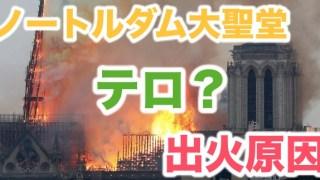 ノートルダム寺院,大聖堂,火災原因,テロ,出火原因,パリ,歴史,ショック,消火,不可能
