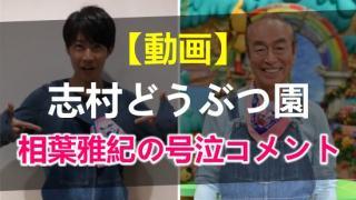 志村どうぶつ園で相葉雅紀の号泣コメント動画のアイキャッチ画像