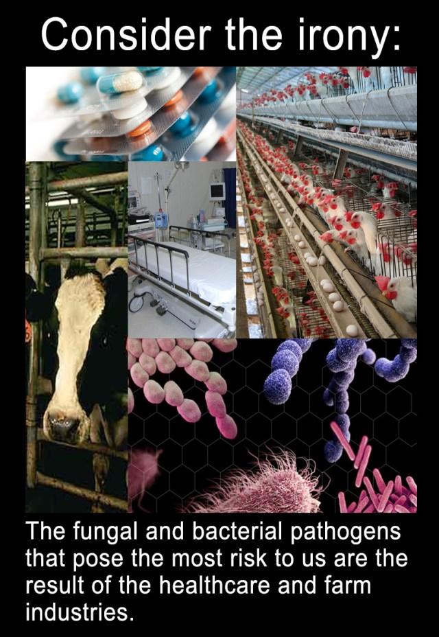 pathogen-meme