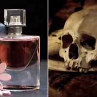 Tego nie kupuj pod choinkę! Składniki rakotwórcze w markowych perfumach. Badania nie pozostawiają złudzeń